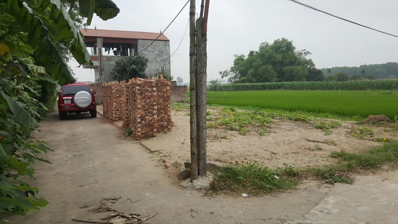 Bán đất đường Lê Hữu Tựu, Nguyên Khê, Đông Anh