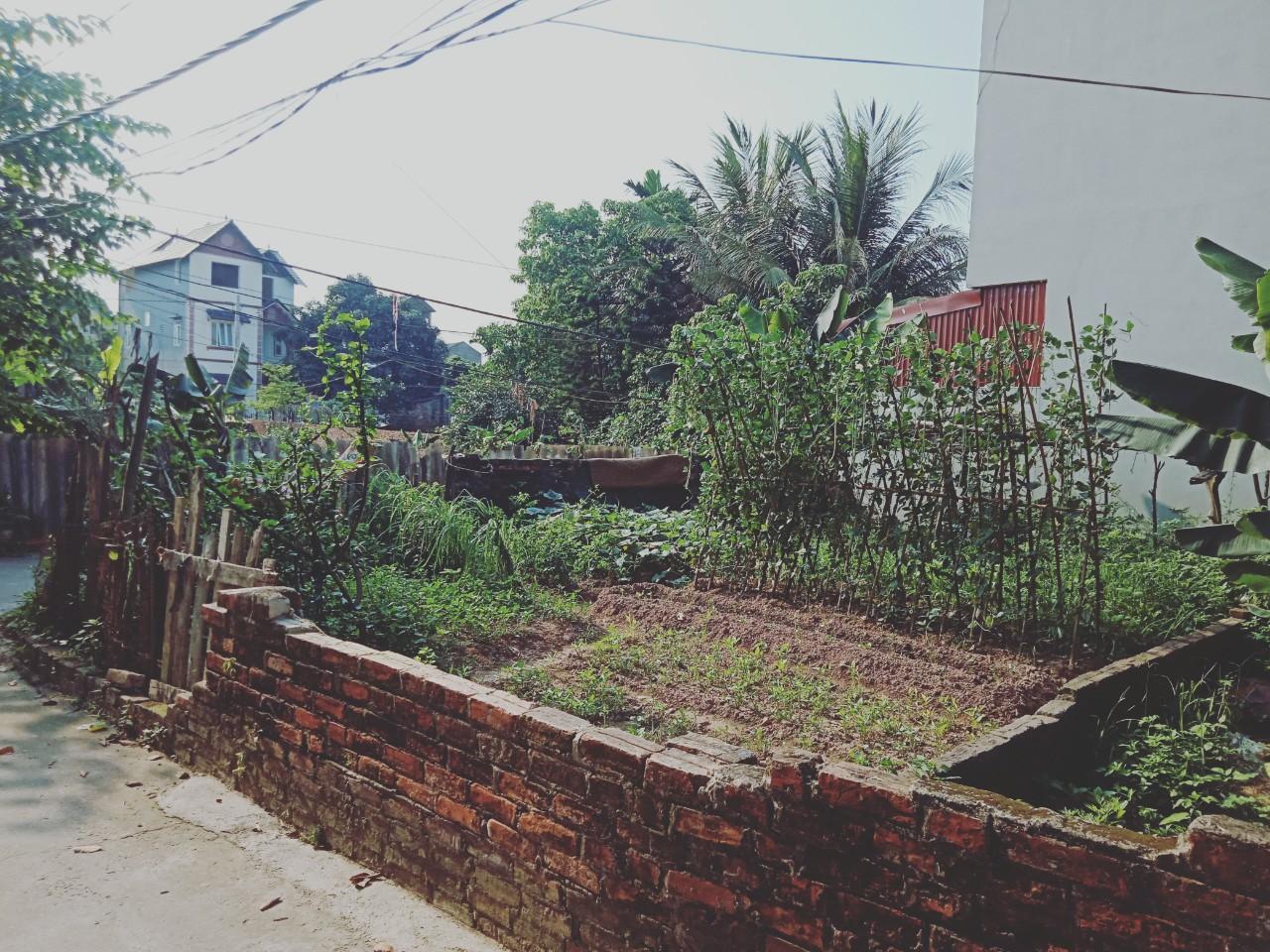 Bán mảnh đất 2 mặt tiền đẹp thôn Đản Mỗ, Uy Nỗ, Đông Anh